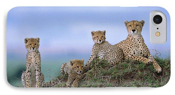 Cheetah Mother And Cubs Masai Mara IPhone Case