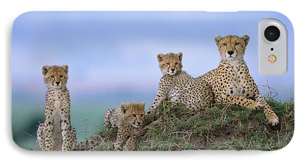 Cheetah Mother And Cubs Masai Mara IPhone Case by Yva Momatiuk John Eastcott