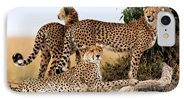 Cheetah Mother And Two Older Cubs In Masai Mara Phone Case by Maggy Meyer