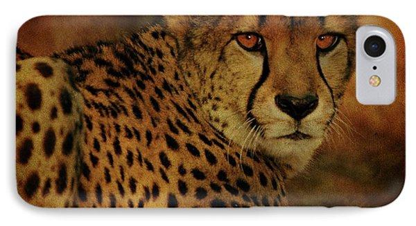 Cheetah Phone Case by Sandy Keeton