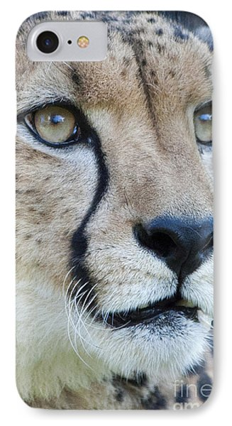 Cheetah Up Close IPhone Case by Lula Adams