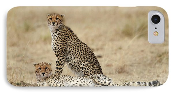 IPhone Case featuring the photograph Cheetahs Resting by Phyllis Peterson