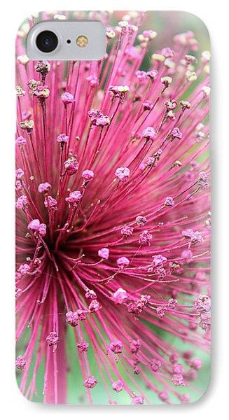 Cherish IPhone Case by The Art Of Marilyn Ridoutt-Greene