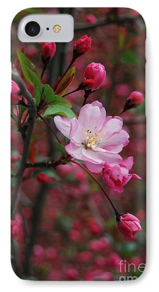 IPhone Case featuring the photograph Cherry Blossom by Eva Kaufman