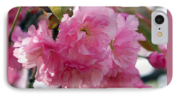 IPhone Case featuring the photograph Cherry Blossom by Gena Weiser