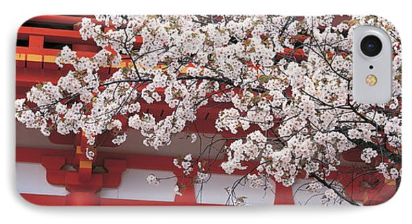 Cherry Blossom Kamigamo Shrine Kyoto IPhone Case by Panoramic Images