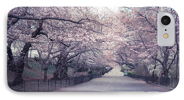 Cherry Blossom Path - Central Park Springtime IPhone Case