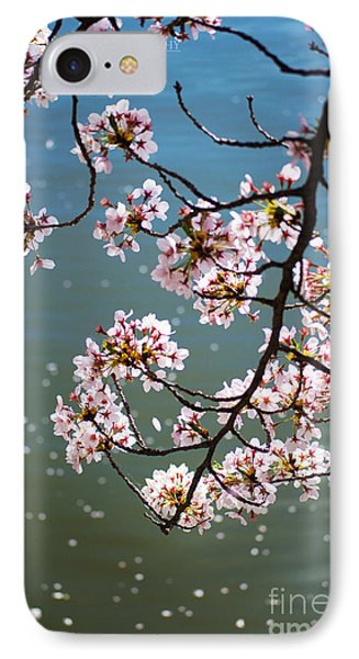 Cherry Blossom IPhone Case by Rima Biswas