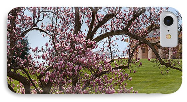 Cherry Blossom Trees At The Gravesite IPhone Case by Panoramic Images