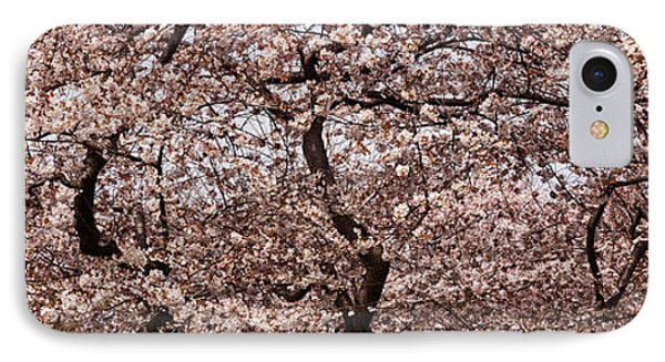 Cherry Blossom Trees In Potomac Park IPhone Case by Panoramic Images