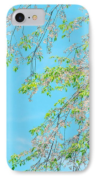 IPhone Case featuring the photograph Cherry Blossoms Falling by Rachel Mirror