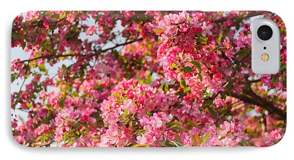 IPhone Case featuring the photograph Cherry Blossoms In Washington D.c. by Mitchell R Grosky