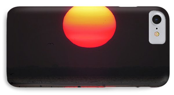 Cherry Drop Sunrise IPhone Case by Dianne Cowen