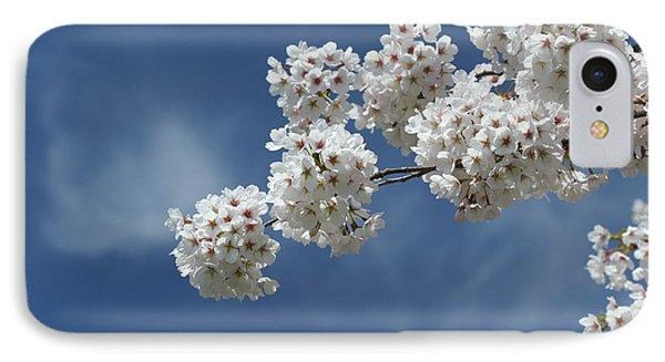 Cherry Tree IPhone Case