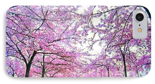 Cherry Trees In Washington Dc IPhone Case by Marie-Line Vasseur