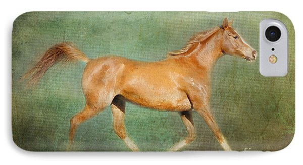 Chestnut Arabian Horse Trotting IPhone Case by Michelle Wrighton