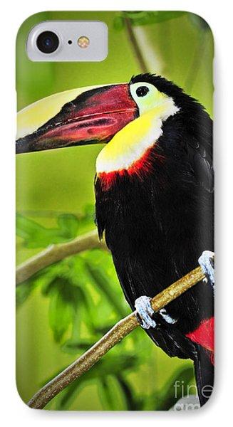 Chestnut Mandibled Toucan IPhone Case