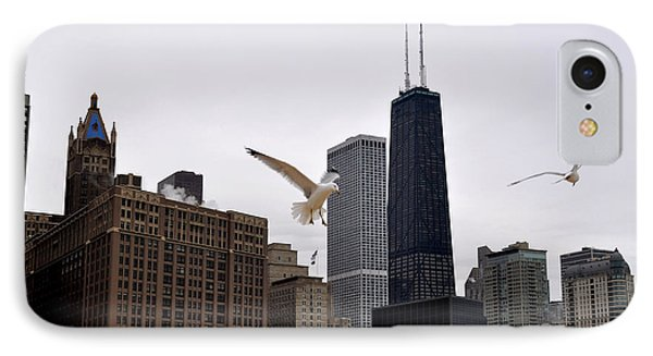 Chicago Birds 2 IPhone Case by Verana Stark