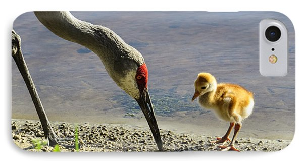Chick At The Lake IPhone Case