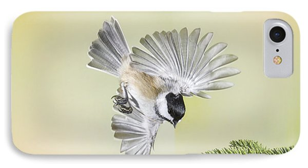 Chickadee And Cone IPhone Case
