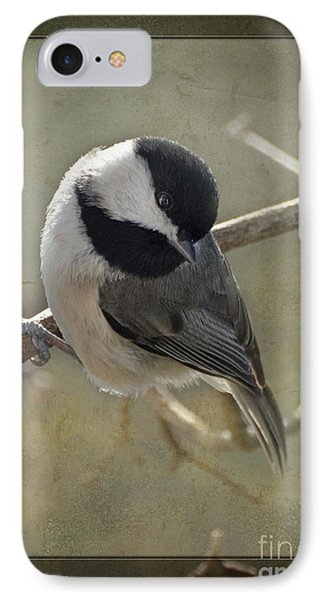 Chickadee Early Bird I Phone Case by Debbie Portwood