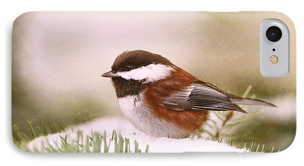 Chickadee In Snow IPhone Case by Peggy Collins