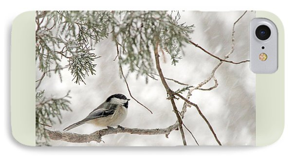 Chickadee In Snowstorm IPhone Case by Paula Guttilla
