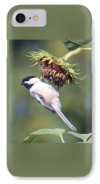 Chickadee On Sunflower IPhone Case by Lucinda VanVleck