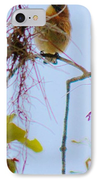 Chickadee IPhone Case
