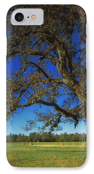 Chickamauga Battlefield IPhone Case by Mountain Dreams