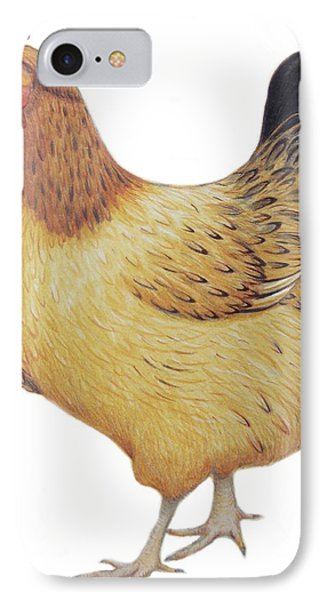 Chicken IPhone 7 Case by Ele Grafton