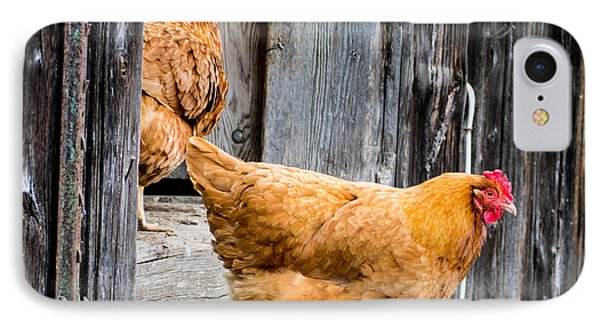 Chickens At The Barn Phone Case by Edward Fielding