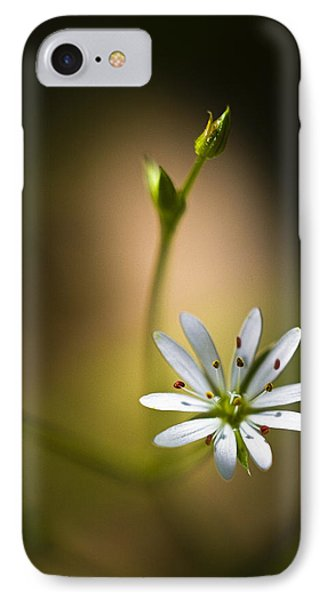 Chickweed Blossom And Bud IPhone Case by Marty Saccone