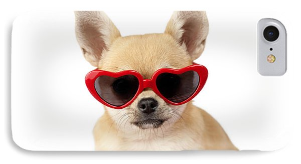 Chihuahua In Heart Sunglasses Dp813 IPhone Case by Greg Cuddiford