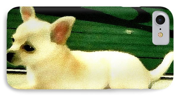 Chihuahua Watercolor Phone Case by Gail Matthews