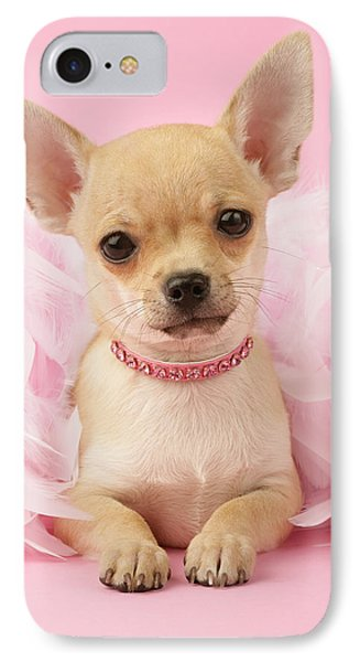 Chihuahua With Feather Boa Phone Case by Greg Cuddiford