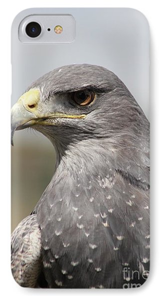 Chilean Eagle IPhone Case