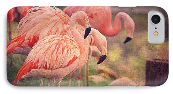 Chilean Flamingos  Phone Case by Maria Angelica Maira
