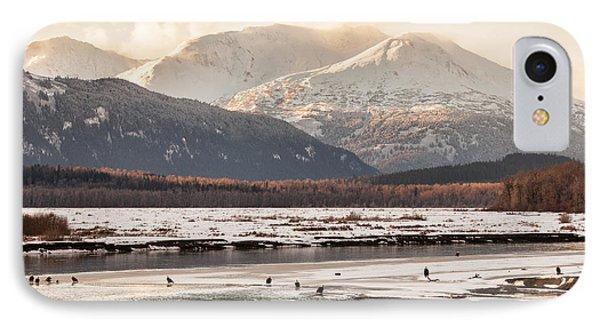 Chilkat Bald Eagle Preserve In Winter IPhone Case by Michele Cornelius