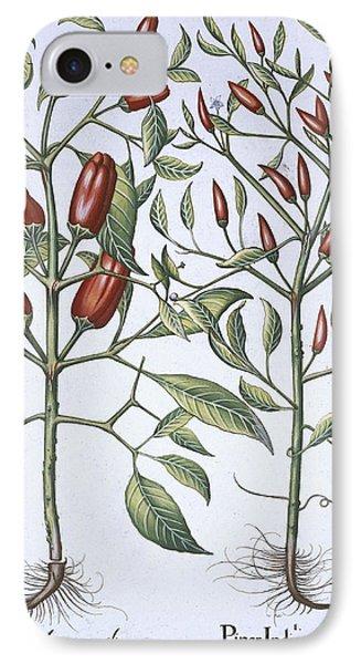 Chilli Pepper Plants IPhone Case by German School