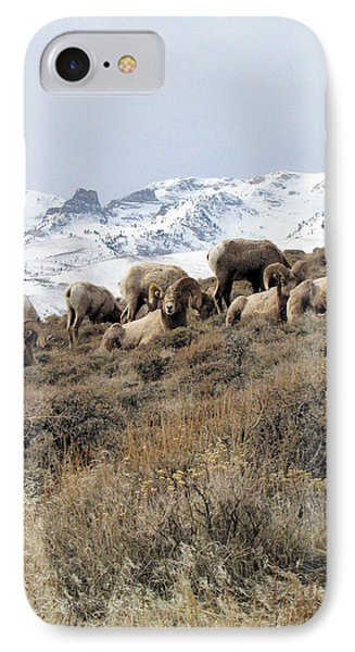 Chimney Rock Rams IPhone Case