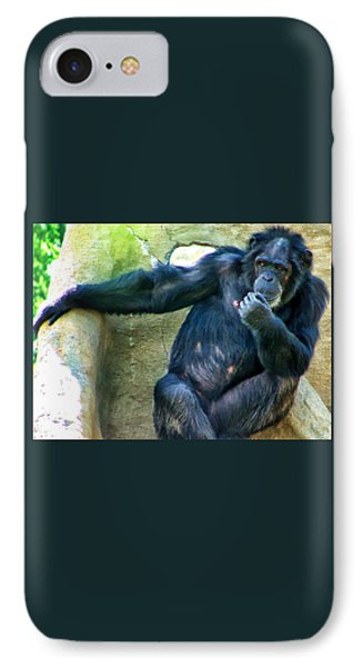 IPhone Case featuring the photograph Chimp 1 by Dawn Eshelman