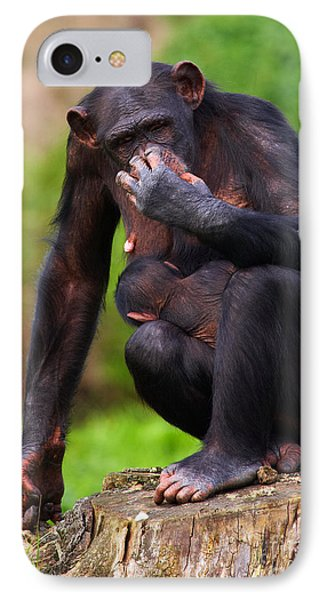 Chimp With A Baby On Her Belly  IPhone Case