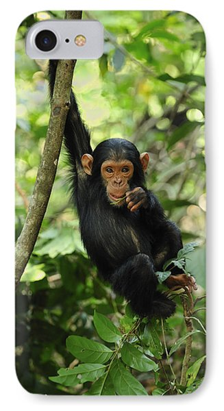 Chimpanzee Baby On Liana Gombe Stream IPhone 7 Case by Thomas Marent