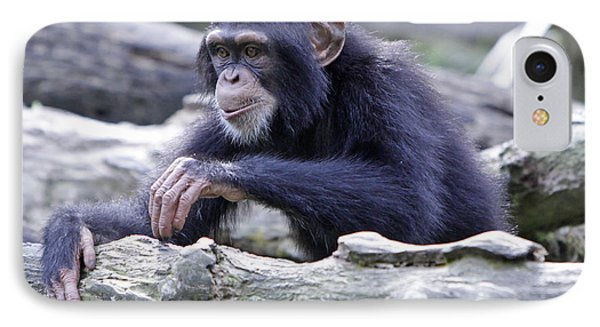 Chimpanzee Playing Phone Case by Shoal Hollingsworth
