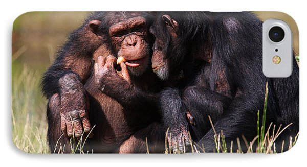 IPhone Case featuring the photograph Chimpanzees Eating A Carrot by Nick  Biemans