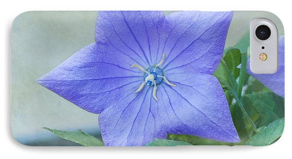 Chinese Bell Flower IPhone Case by Kim Hojnacki