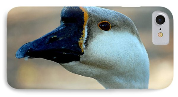 Chinese Goose Phone Case by Lisa Phillips