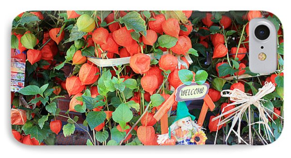 Chinese Lantern Plant IPhone Case