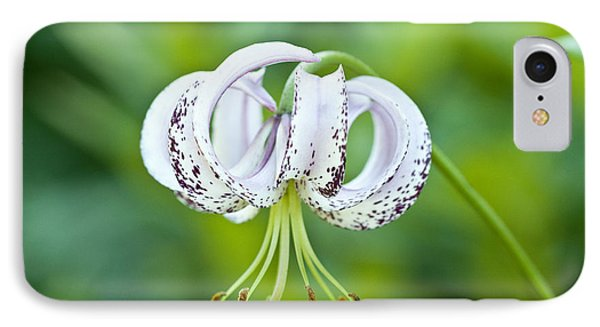 IPhone Case featuring the photograph Chinese Lily by Lana Enderle